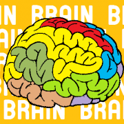 brain and think