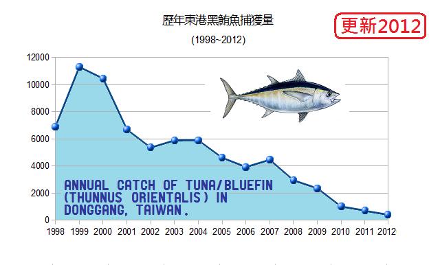 tuna fish catch amount