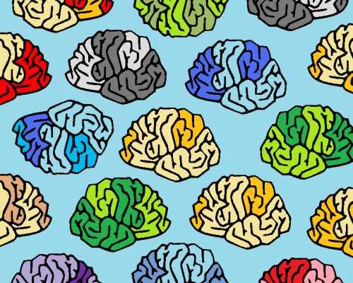 brain 集體智慧