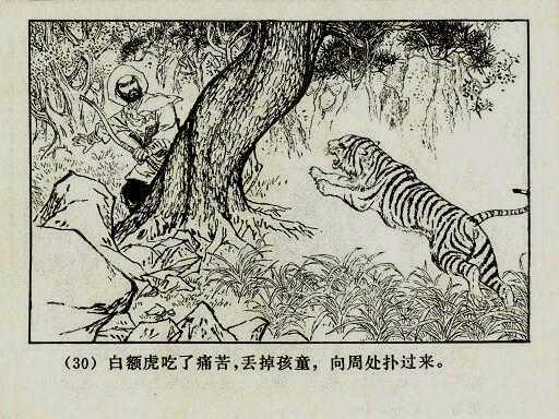 kill-tiger-01as